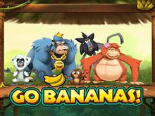 Go Bananas!