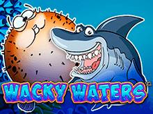 Слот Wacky Waters с бонусной игрой